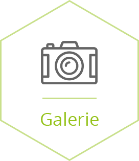 Galerie_selected
